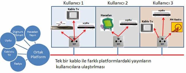 Ortak Platform