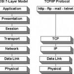 network protokol nedir?